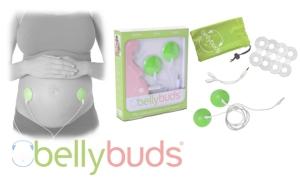 bellybudscollagelogoweb