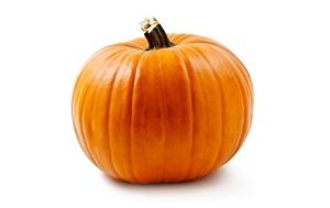 yogurt_pumpkin_img2